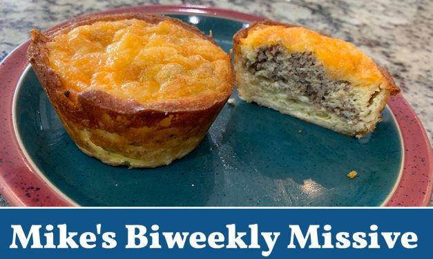 Return to the Workplace: Too soon? Not soon enough? Never should have closed? (Mike's Biweekly Missive)